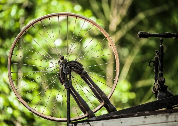 natur genom hjulliten